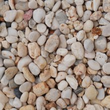 Apricot New DRY 14 - 22mm