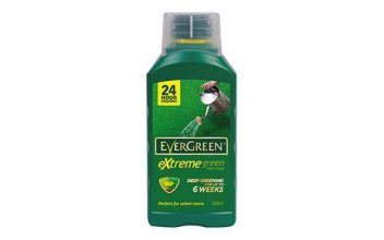evergreen extreme green